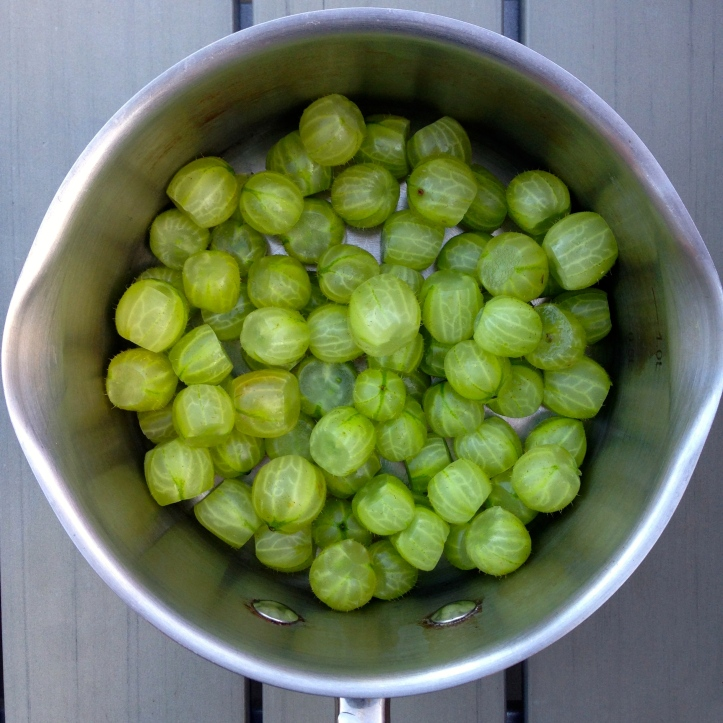 gooseberries galore